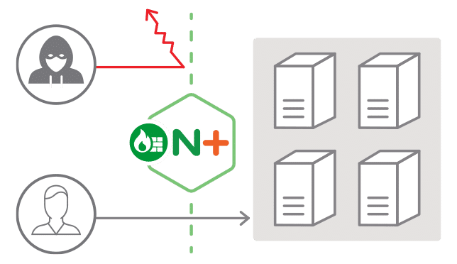 NGINX Plus Screenshots