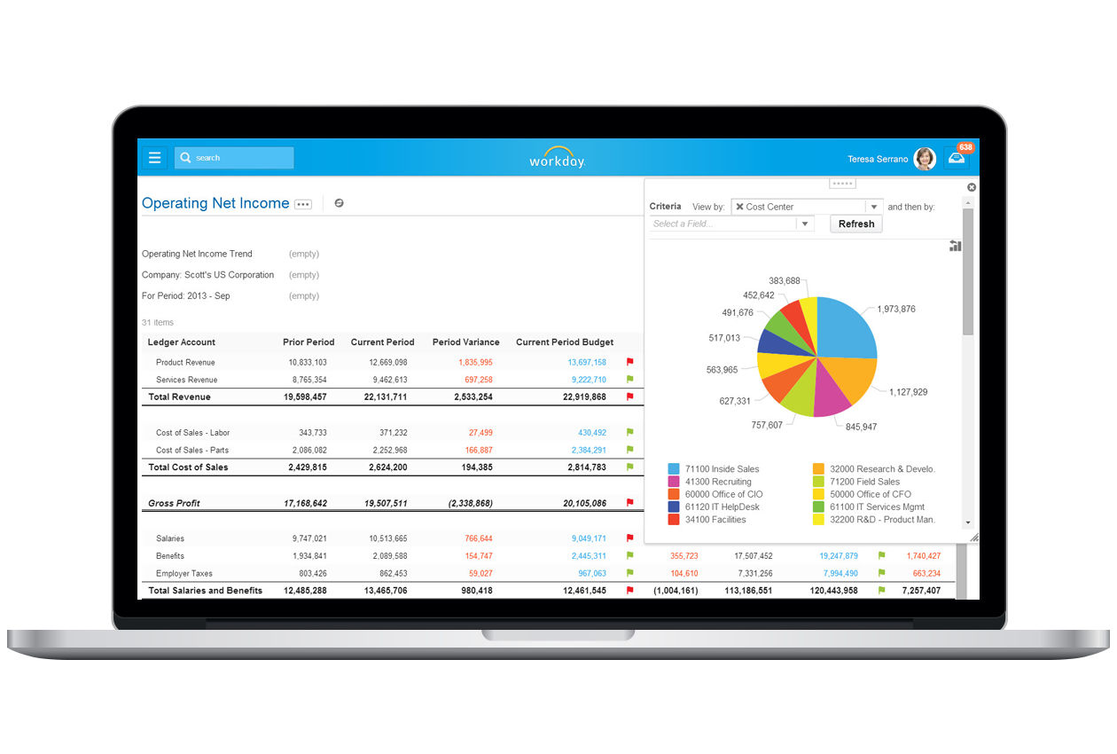 Workday Financial screenshot: Workday Financial Management - Net Income